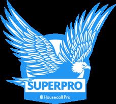5e1fa6c983568e7e9171ed5e_Superpro_badge_Eagle_Level1.png